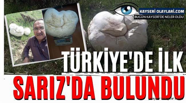 Türkiye'de Bir İlk! Sarız'da Bulundu